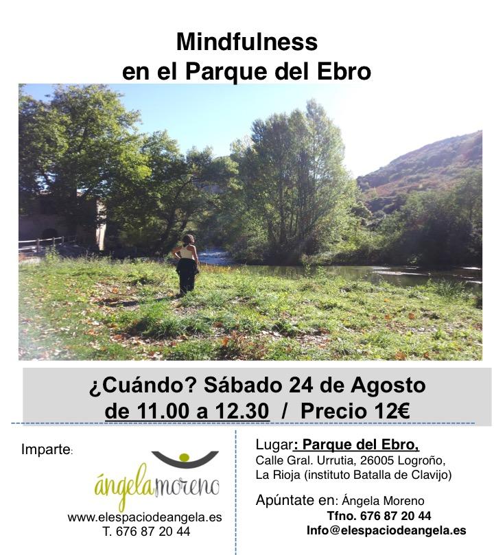 taller ebro web 24 8 2019 - Mindfulness en El Parque del Ebro